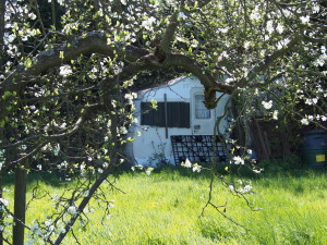 Caravan in an orchard, Teynham, by S Palmer